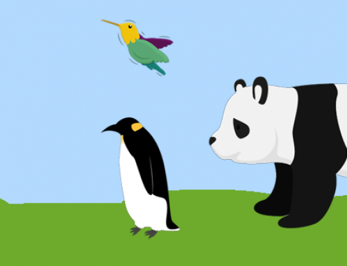 Panda, Penguin and Hummingbird – An Introduction To Google's Zoo